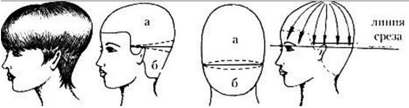 Схема стрижки: классический вариант